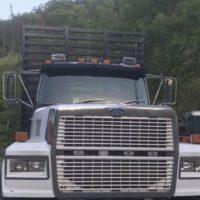 1991 Ford LTL 9000 Log Truck