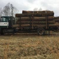 1989 Ford 8000 Log Truck